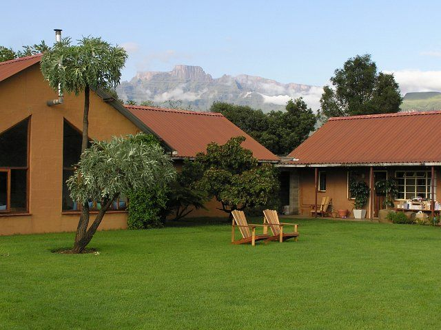Review: Inkosana Lodge – backpackers accommodation (south africa)
