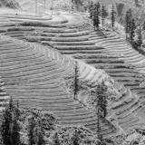 – Weltreise – Sa Pa North Vietnam 352 de7b97fe0f7e32e119231fef88dc8160 gray 160x160
