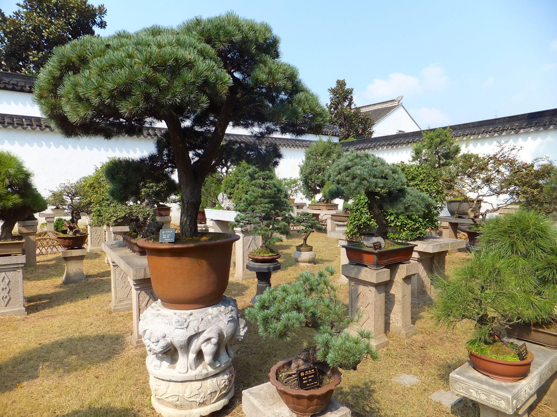 Suzhou – Die Stadt der schönen Gärten