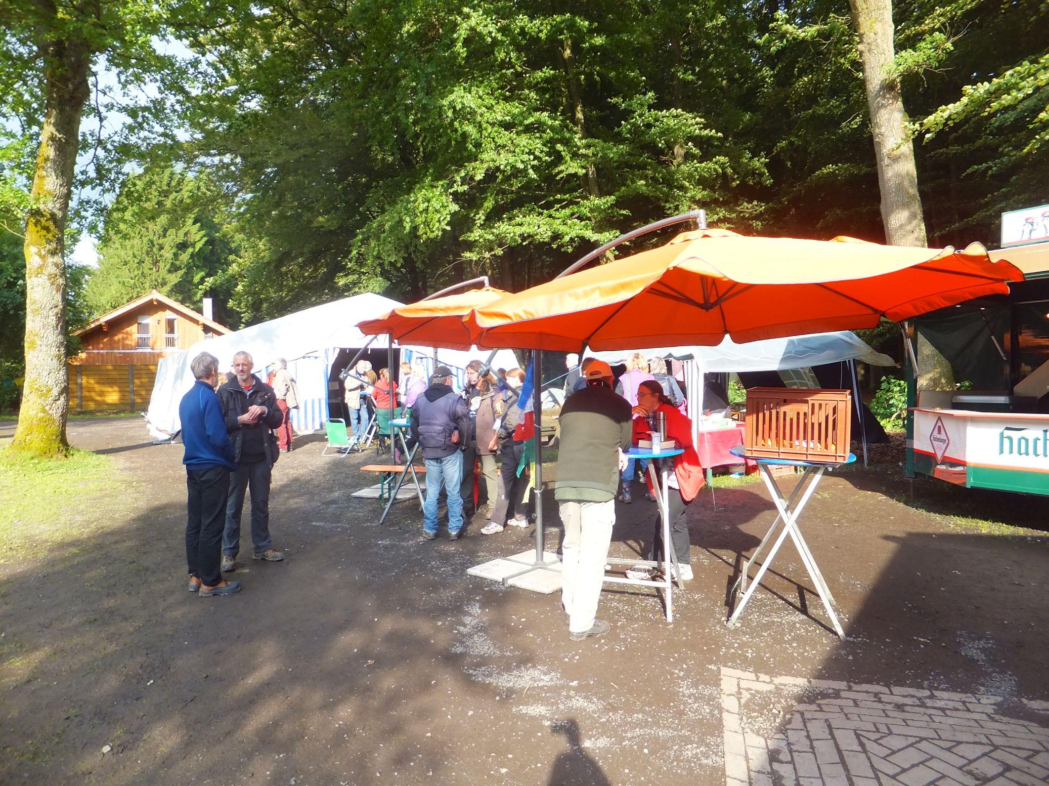 Sommertreffen der DZG 2013