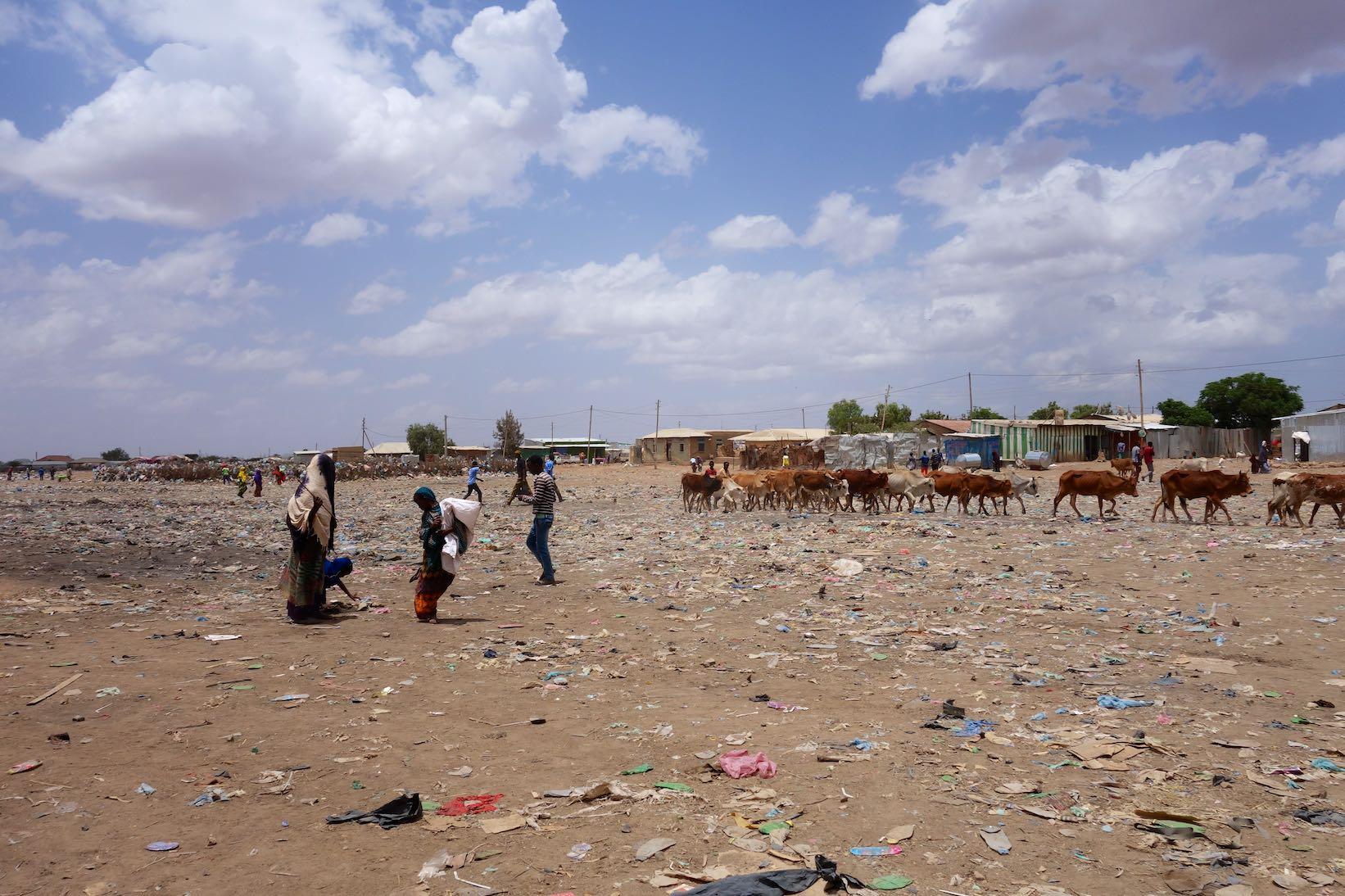 Somaliland ist einfach zu teuer und immer diese Checkpoints