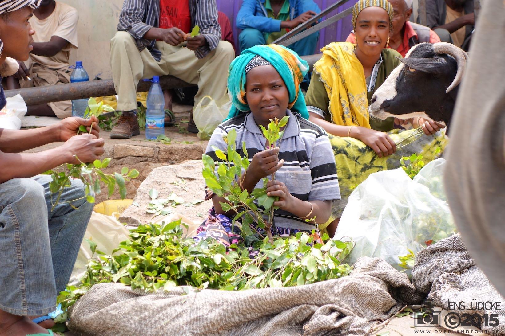 Khat-Markt in Harar