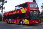 Rote City Sightseeing Bus