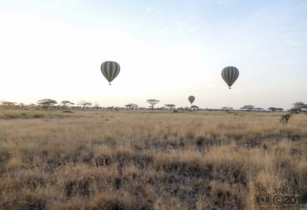 Serengeti Safari Tour in Tansania