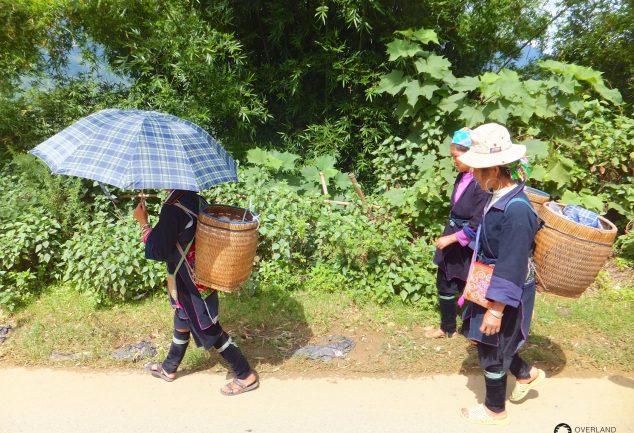 Sa_Pa_North_Vietnam_347
