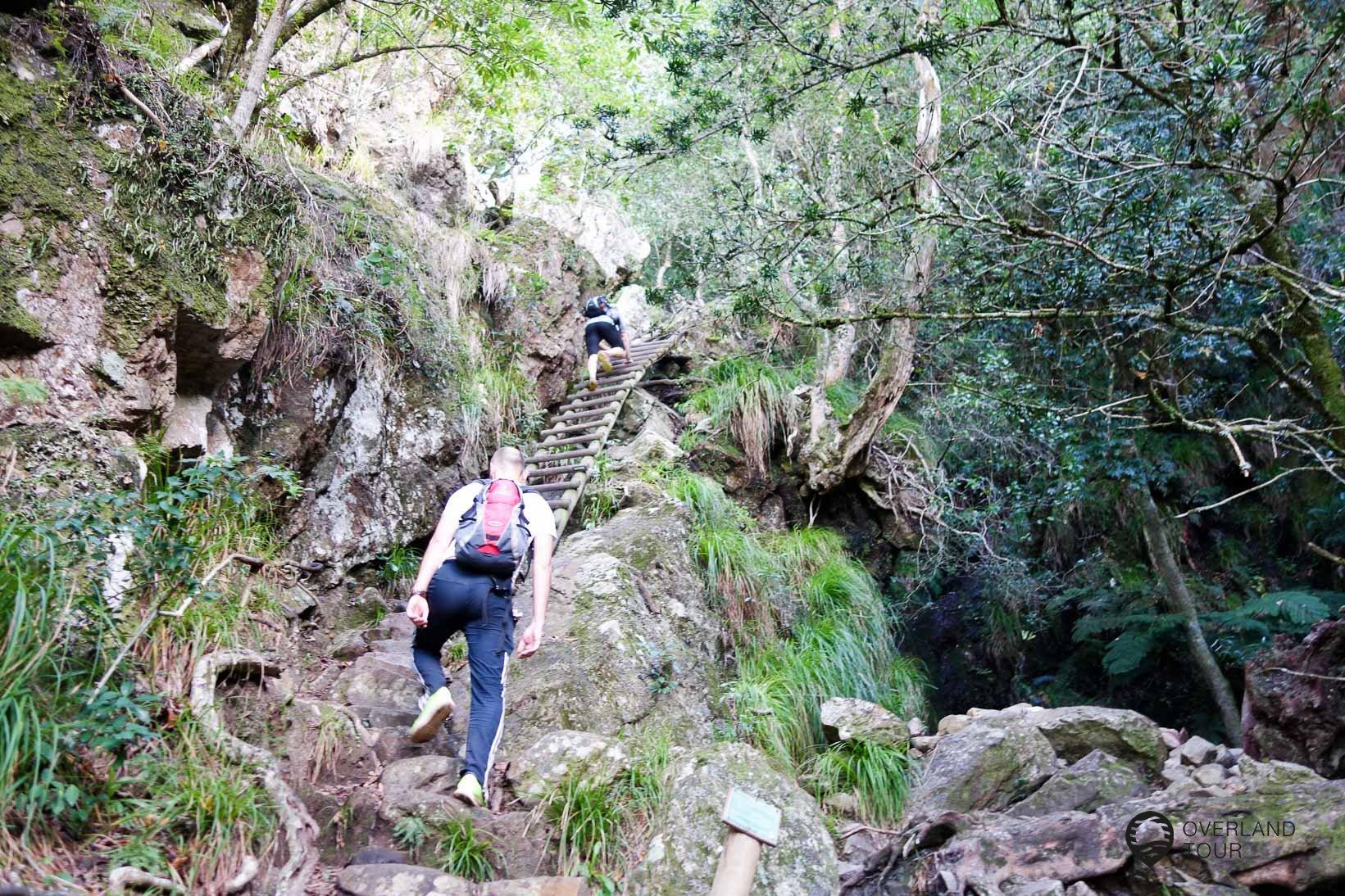 Skeleton Gorge Trail