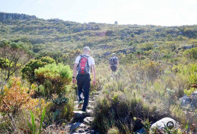 Skeleton Gorge Trail - Die Tafelberg Wanderung