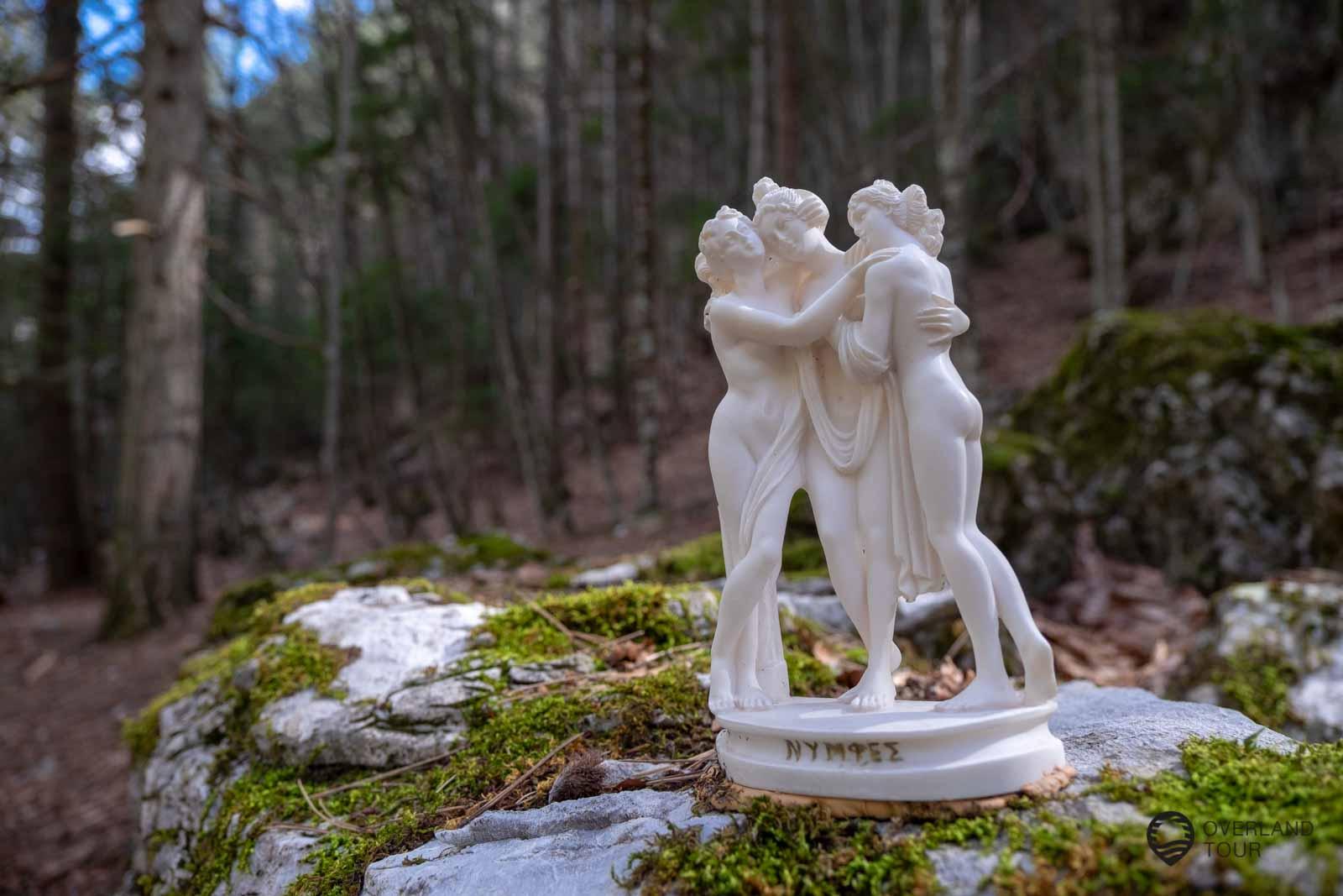 Ein kurzer Spaziergang durch den Wald