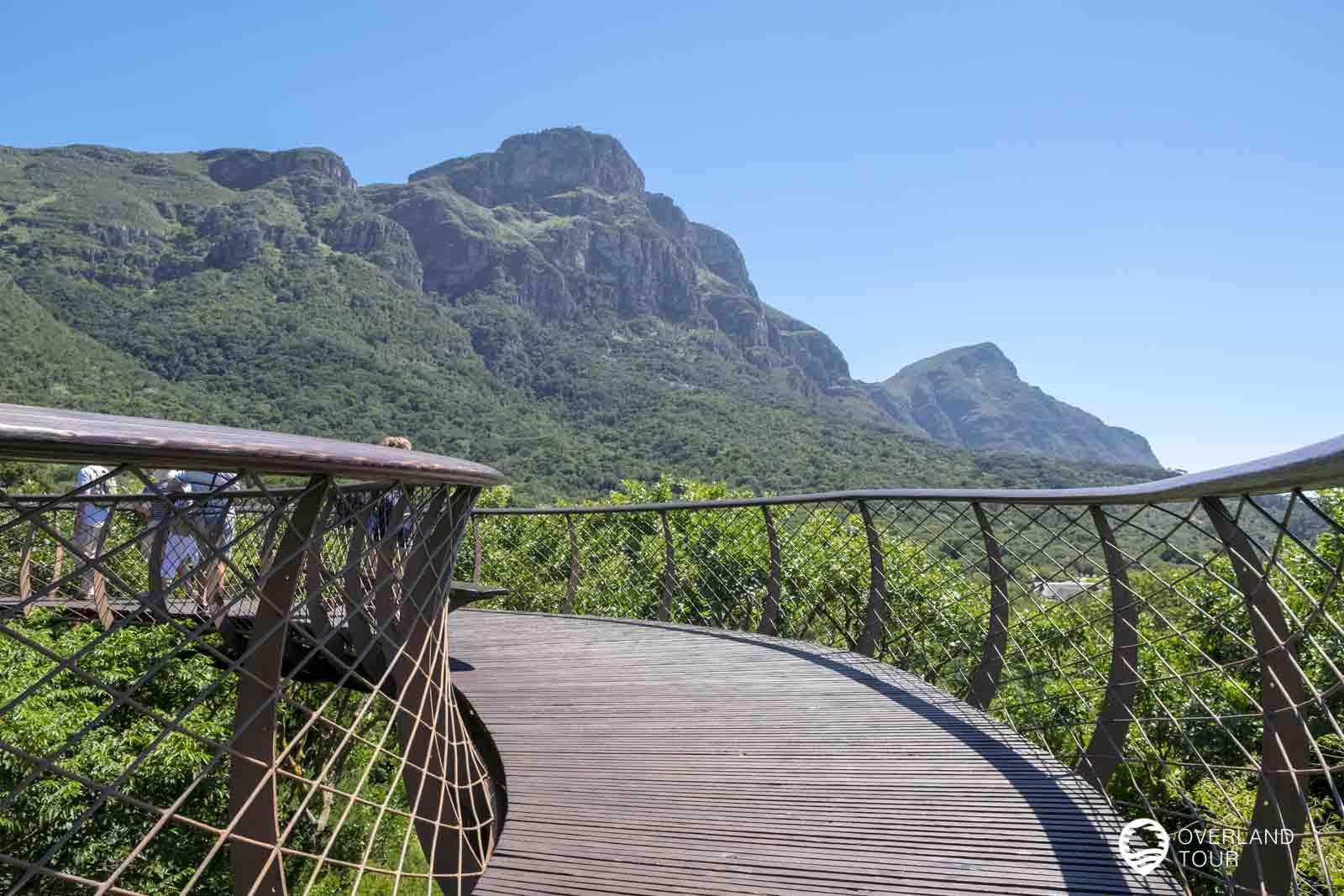 Botanischer Garten Kirstenbosch in Kapstadt