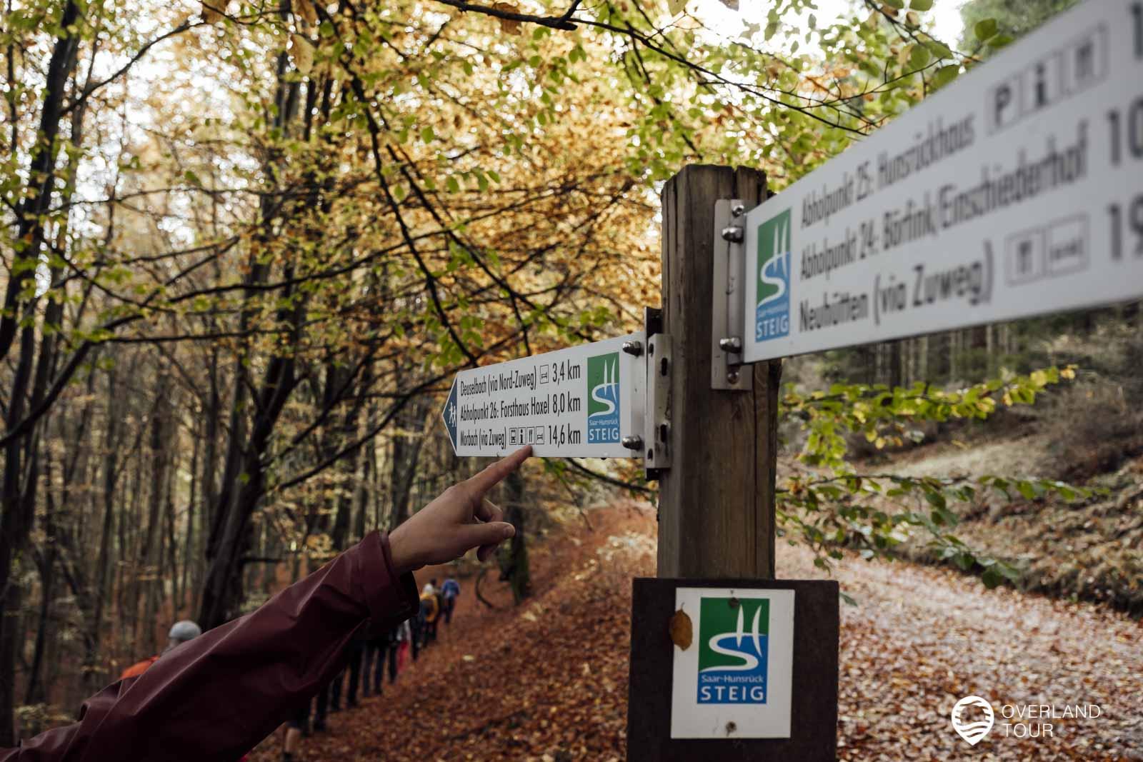 Herbst-Wandern auf dem Saar-Hunsrück-Steig