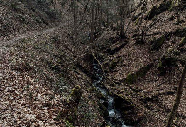 Wanderung Traumschleife Fünfseenblick mit Traumaussicht über den Rhein
