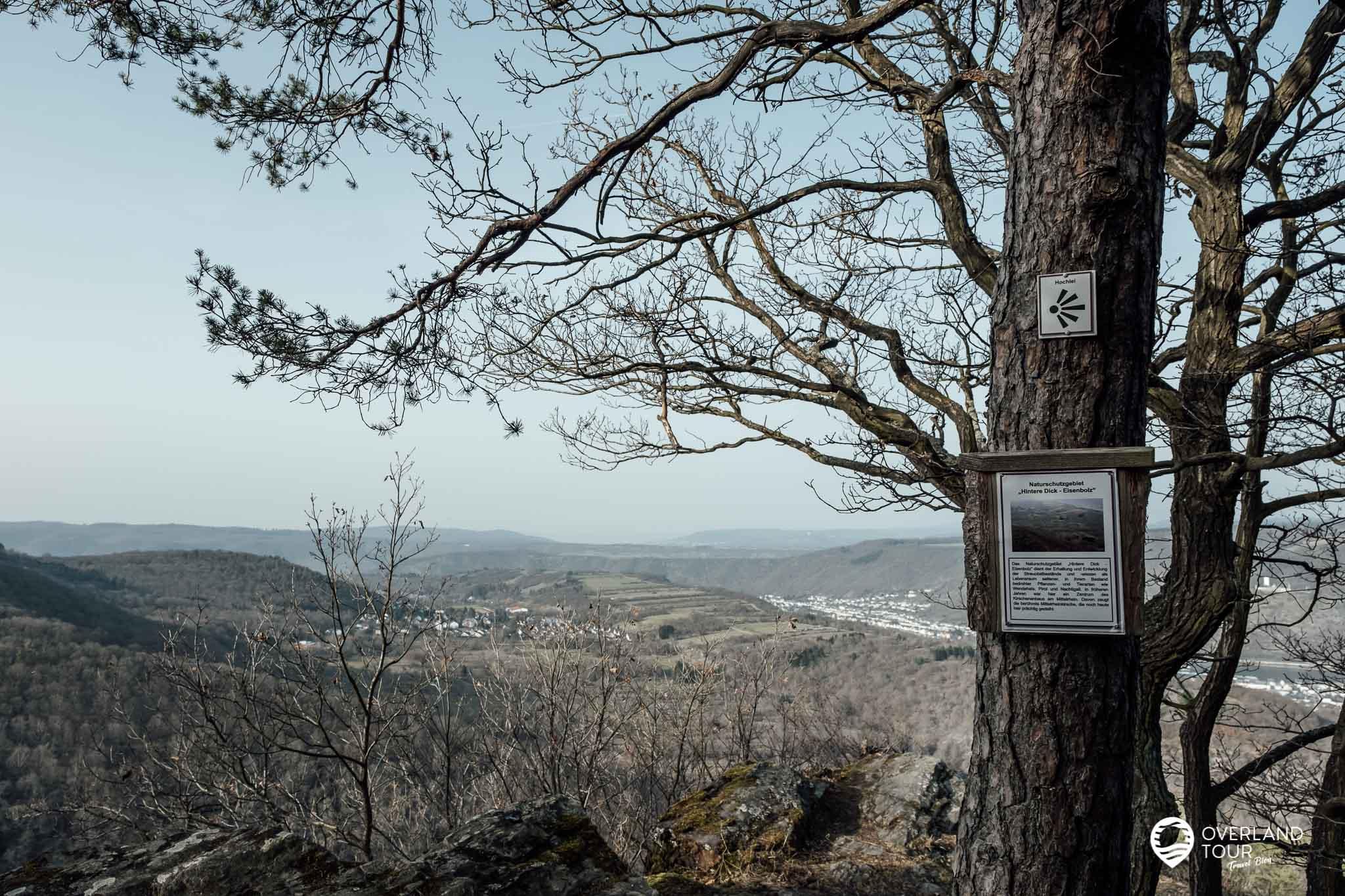 Wanderung Traumschleife Fünfseenblick: Der Aussichtspunkt Hochlei bei Kilometer 8